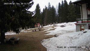 Уеб камера от хижа Вежен в подножието на връх Вежен на 1650 м.