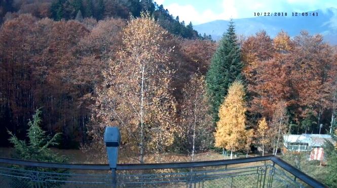 Уеб камера от хижа Васил Левски на 1400 м.н.в. в Централен Балкан, Стара планина