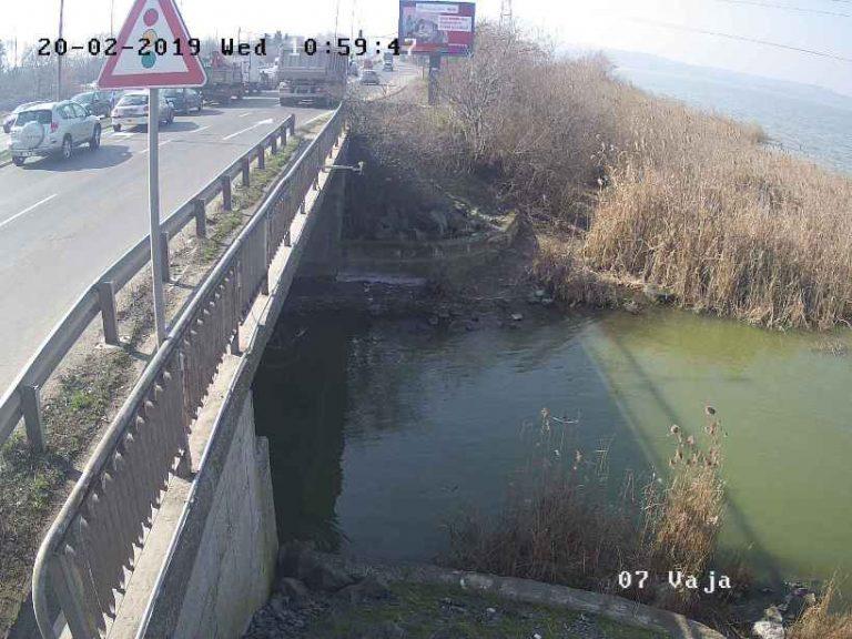 Уеб камери от Бургаско езеро (Вая)
