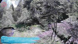 Уеб камера от хижа Кикиш, Витоша под връх Камен дел, на 1430 м
